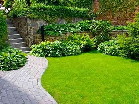 Gartenpflege Garten Grün Landschaftsbau Kropp